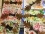 Netopýři - listí